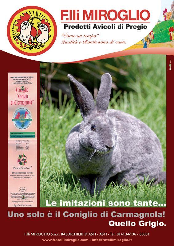 Volantino A4 Coniglio di Carmagnola