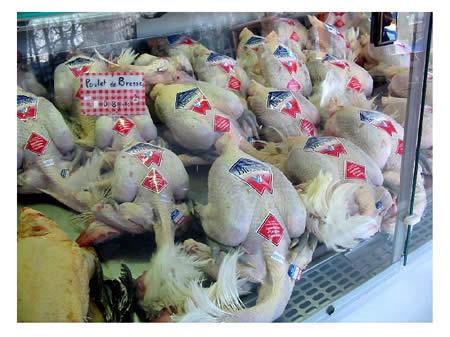 Pollo di Bresse AOC